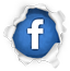 Graficonet Web Hosting LLC Facebook